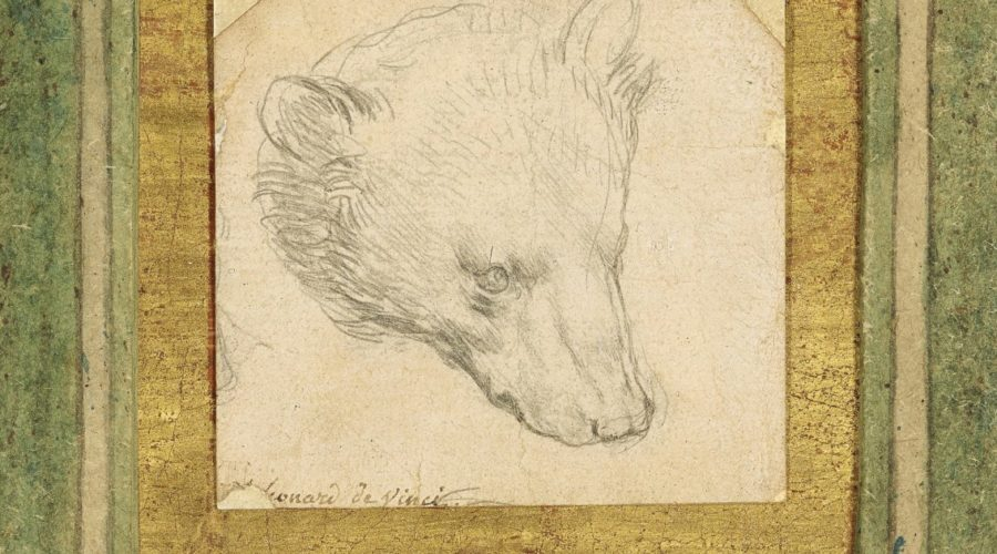 Da Vinci's bear drawing set to sell for up to $ 16.5 million in London
