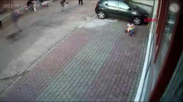Pitbull attacked the boy! The whole neighborhood was horrified ... These moments were filmed.